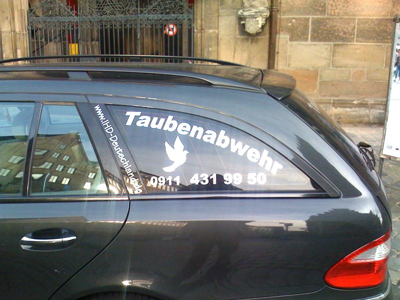 taube02